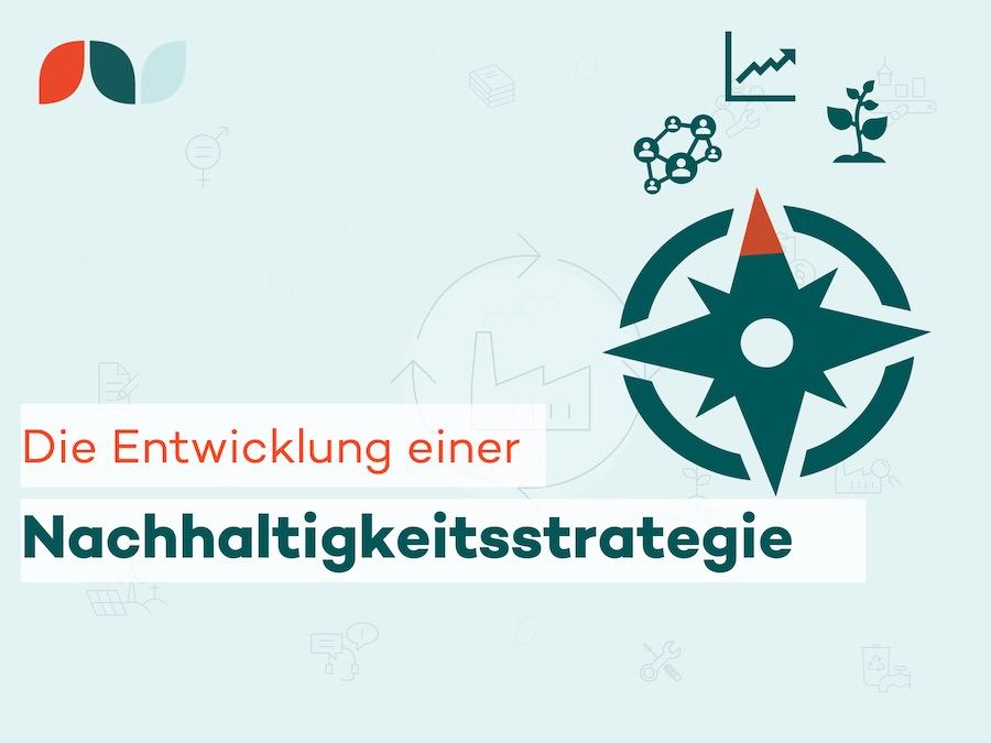 Thumbnail des Beitrags: Entwicklung einer Nachhaltigkeitsstrategie